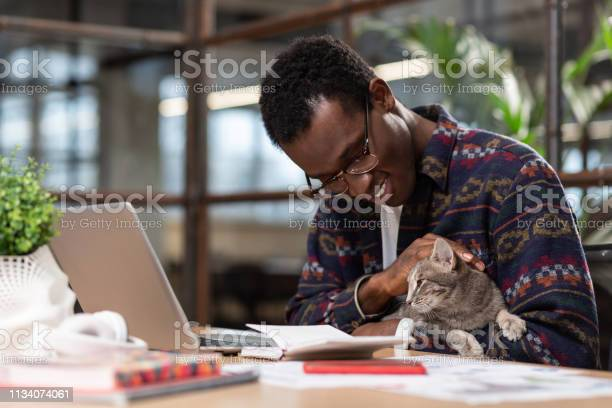 Man doing his tasks with a cat in his hands picture id1134074061?b=1&k=6&m=1134074061&s=612x612&h=1qkny6w0ws9jhsywkojhhjudonpw3zfdffhgcy6ff5i=