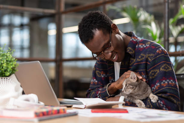 man doing his tasks with a cat in his hands - pet owner stock pictures, royalty-free photos & images