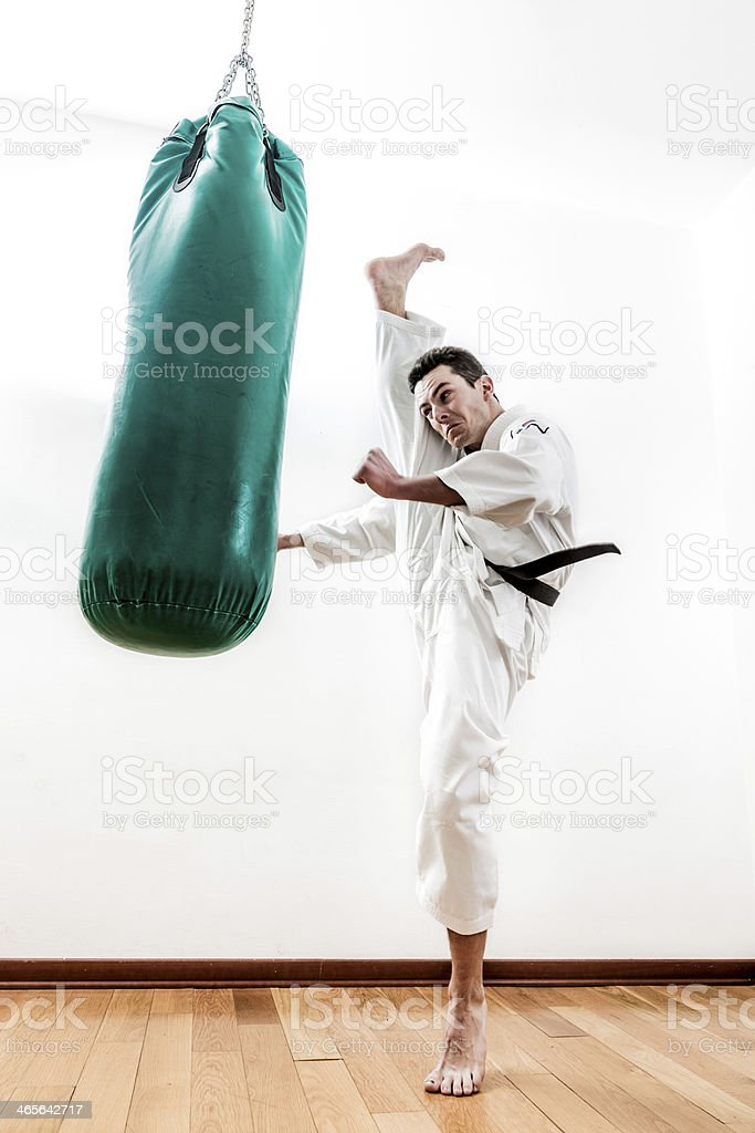 Man doing Martial Arts training royalty-free stock photo