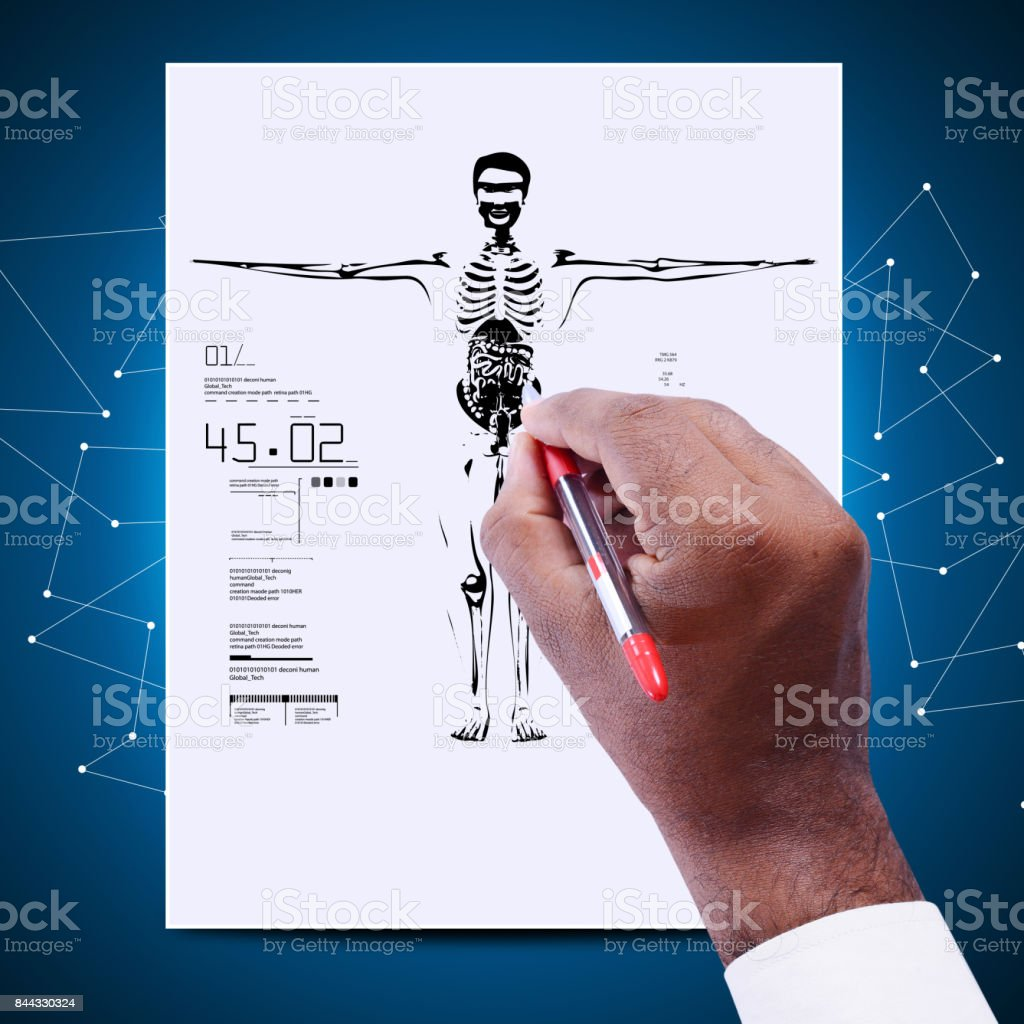 Man drawing the sketch of skeleton stock photo