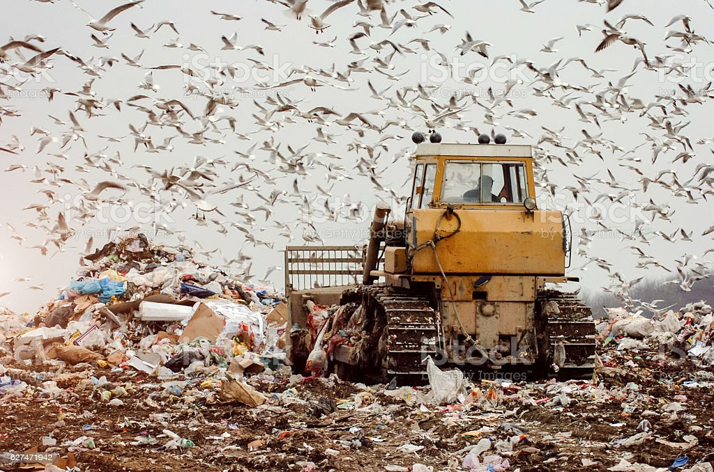Man driving a garbage truck on a landfill stock photo