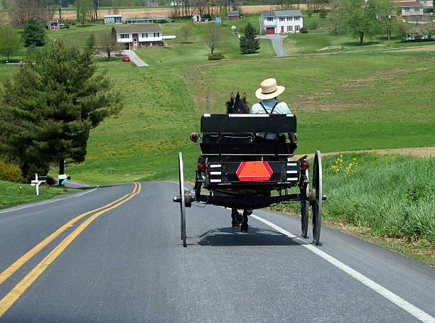 Buggy Amish - Photo