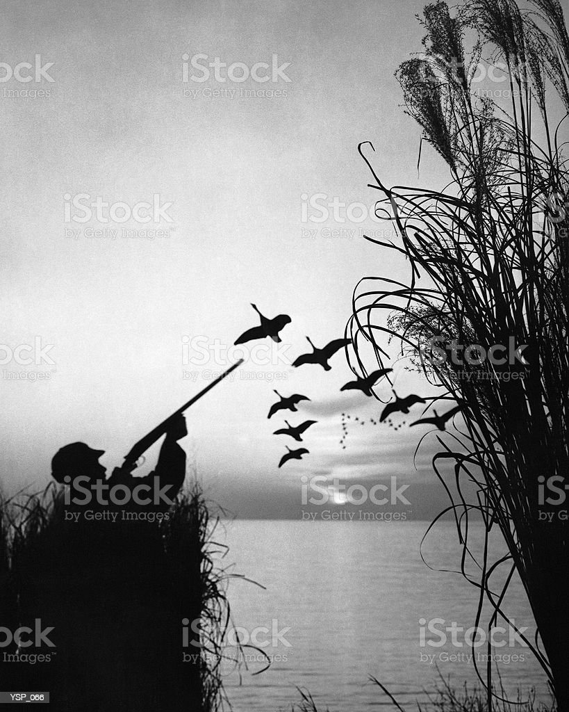 Man duck-hunting royalty-free stock photo