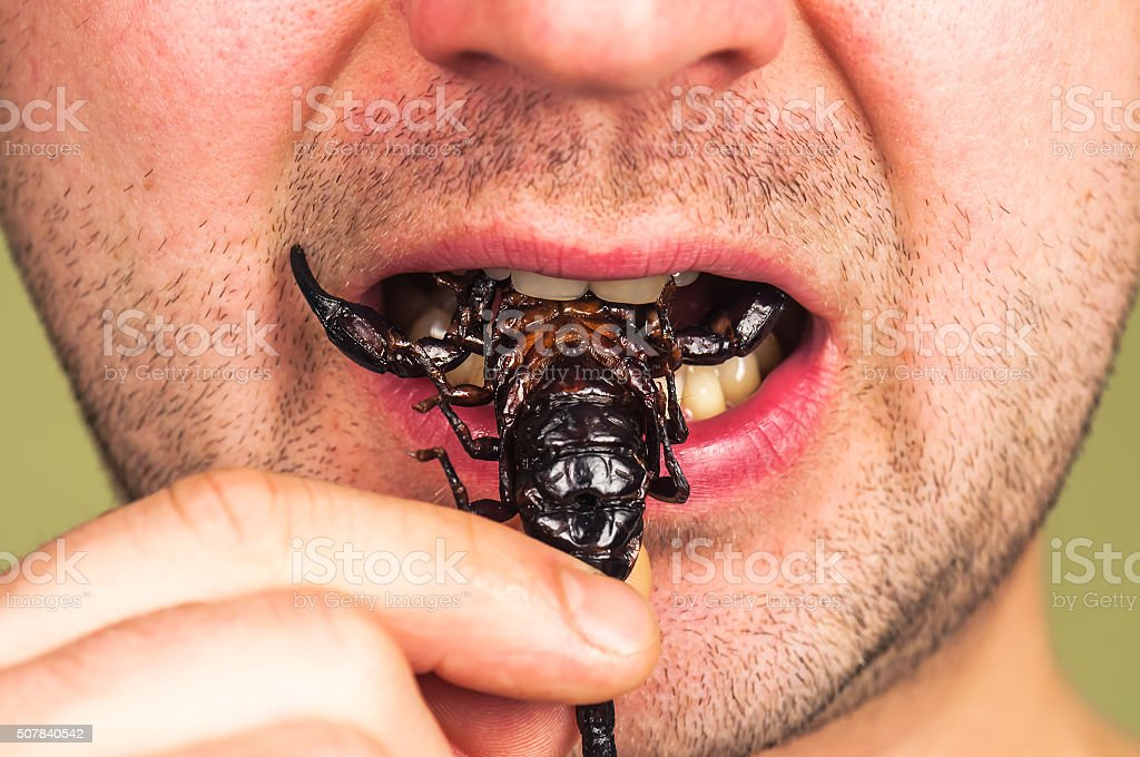 man eats a scorpion stock photo