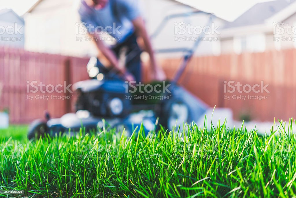 Man emptying bag on back of lawnmower. Mowing and yardwork. stock photo