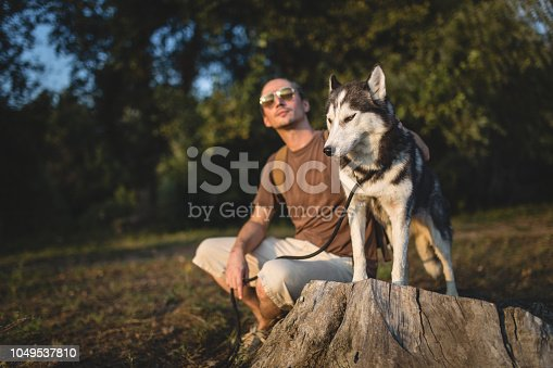 istock Man enjoys in nature with husky 1049537810