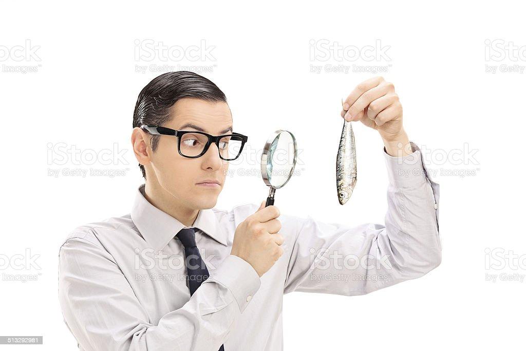 Man examining a fish through magnifying glass stock photo