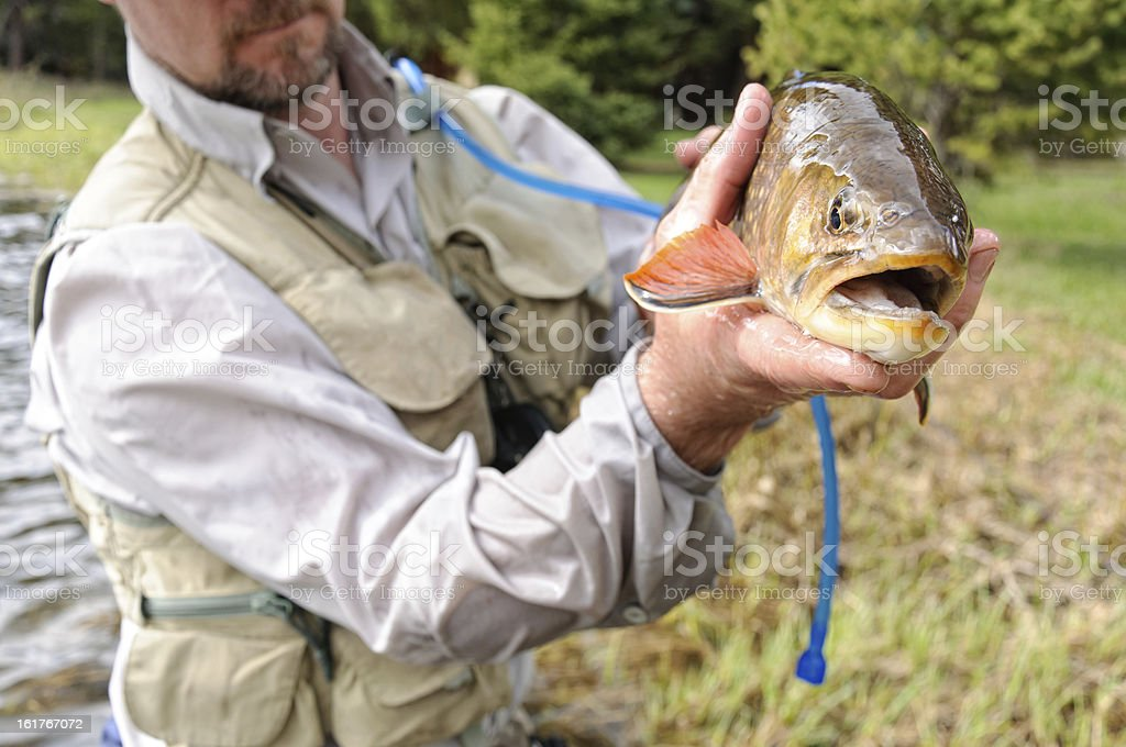 Man Excited Holds Large Brook Trout royalty-free stock photo