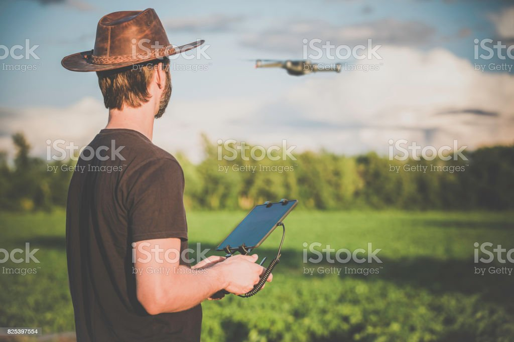 Man Farmer Pilot Using Drone Remote Controller at Sunset stock photo