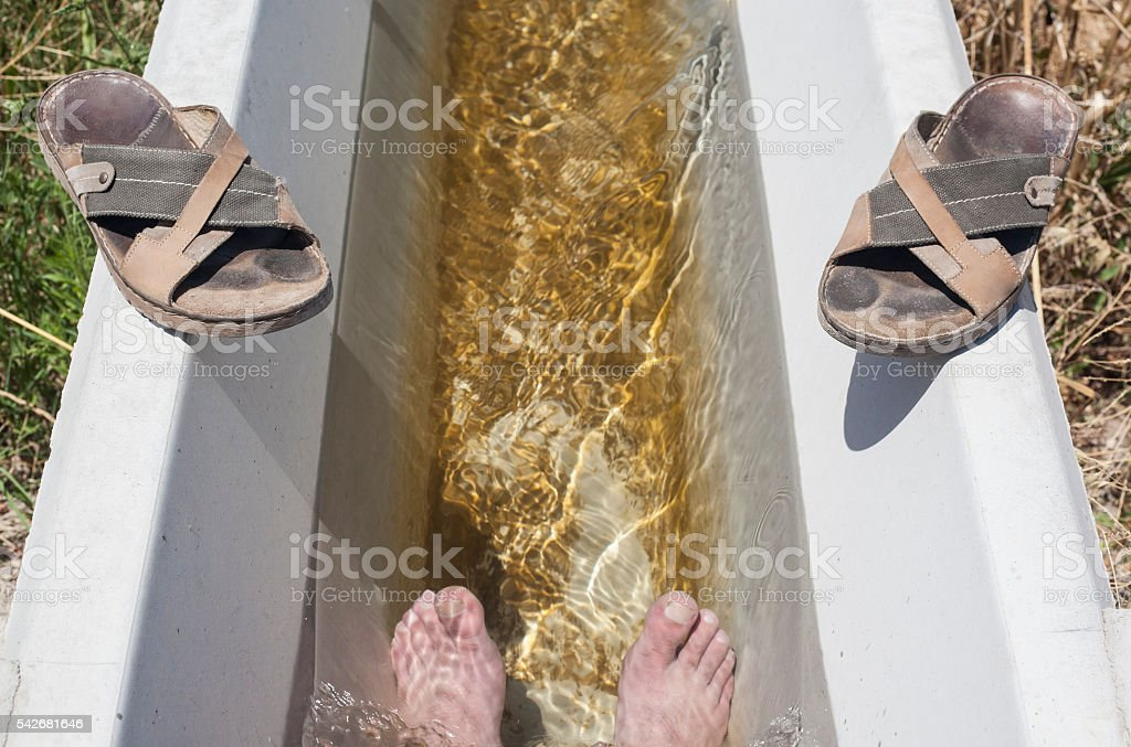 Man feet refreshing in a cool irrigation canal stock photo