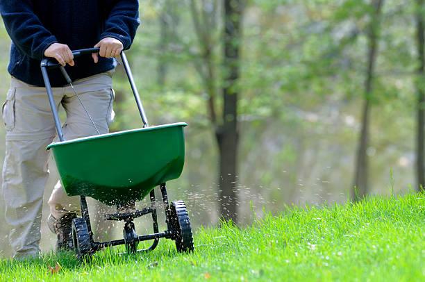 잔디 fertilizing - 비료 뉴스 사진 이미지