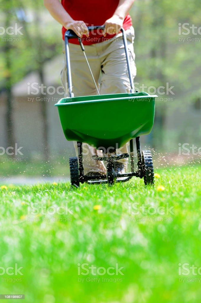Hombre Fertilizing Lawn - foto de stock