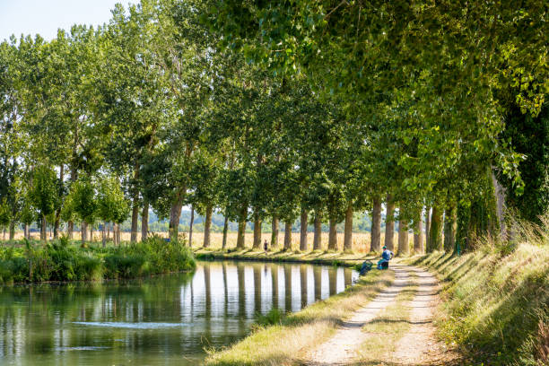 A man fishing in the still waters of the river Marne, France, and a woman walking her dog on the tree lined towpath alongside the canal. Varreddes, France - August 18, 2018: Typical bucolic summer scene on the tree lined towpath alongside the canal of the river Marne with a man fishing in the still waters and a woman walking her dog. marne stock pictures, royalty-free photos & images