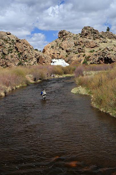 Man fishing on Tarryall Creek, South Park, Colorado stock photo
