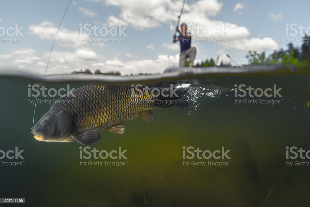 Man fishing on the lake stock photo