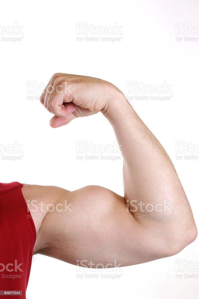 Man flexing big bicep arm muscle. White background. Athlete. Exercise. royalty-free stock photo