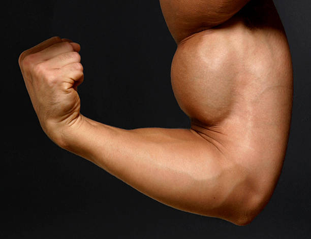 Man flexing his biceps and clenching his fist stock photo