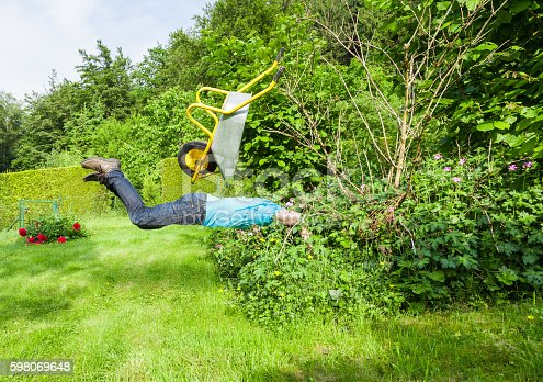 istock Man flies with wheelbarrow in a bush. 598069648