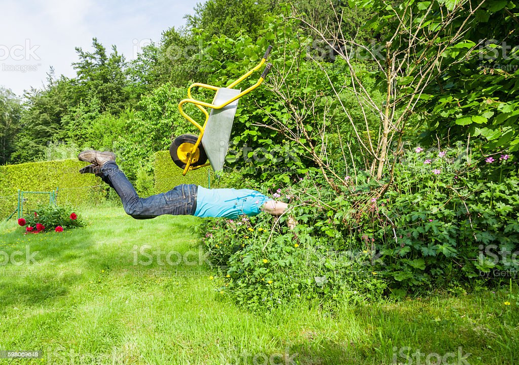 Man flies with wheelbarrow in a bush. stock photo