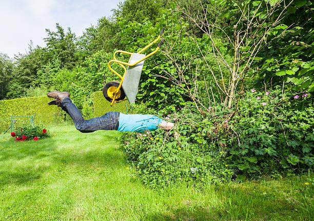 Man flies with wheelbarrow in a bush. stock photo