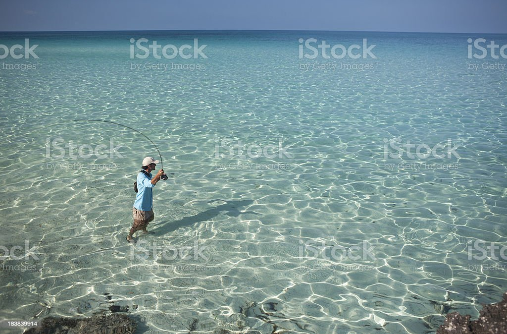 Man Fly Fishing for Bonefish in the Caribbean. stock photo