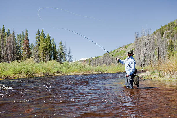 Man fly fishing in river, Colorado, USA  vail colorado stock pictures, royalty-free photos & images