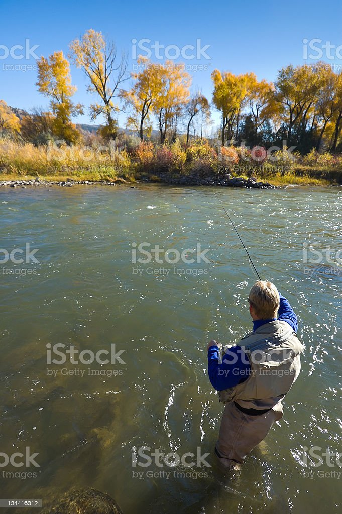 Man Fly Fishing in Scenic River royalty-free stock photo