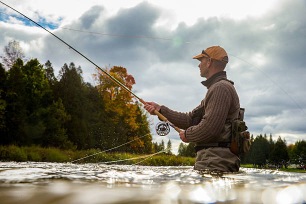 Man fly fishing in the fall in a river A man casts his fly rod into a river during the autumnA man casts his fly rod into a river during the autumn casting stock pictures, royalty-free photos & images
