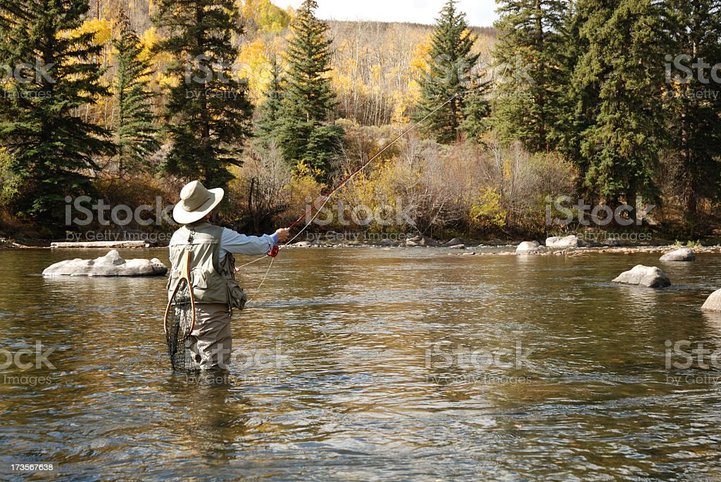 A man fly fishing in the water of a river royalty-free stock photo