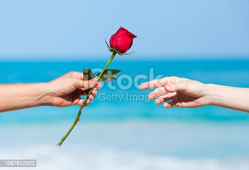 istock Man giving a woman rose 1067612022