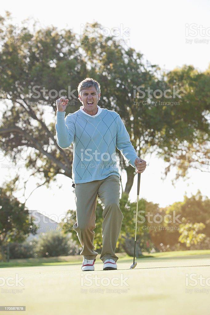 Man golfing royalty-free stock photo