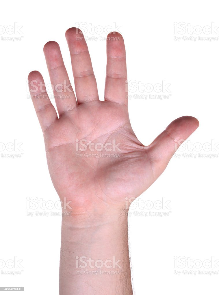Man Hand (Isolated) royalty-free stock photo