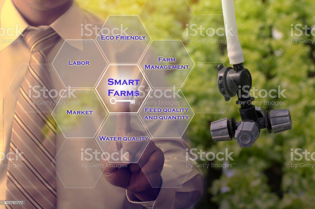 Man hand pressing on Smart Farms Key.  Smart Farms concept. stock photo