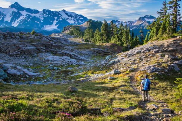 man hiker walks on mountain trail - góry kaskadowe zdjęcia i obrazy z banku zdjęć