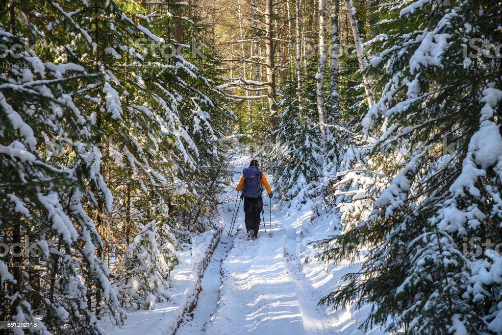 Excursionista de hombre con mochila en paisaje de bosque nevado de invierno. Concepto al aire libre vacaciones activas - foto de stock