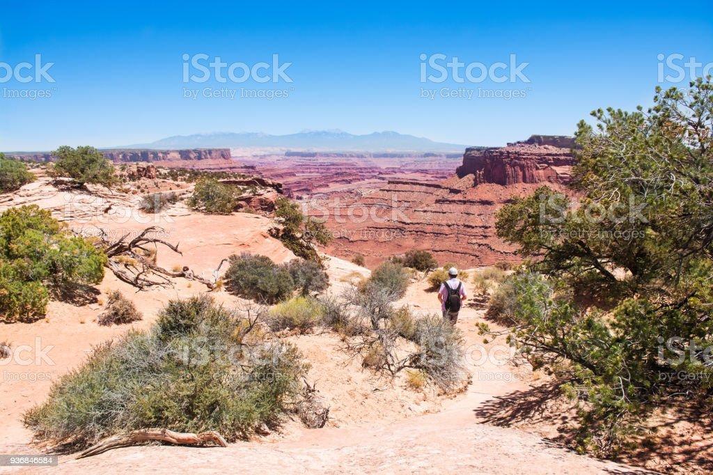 Man hiking alone in Canyonlands Utah. stock photo