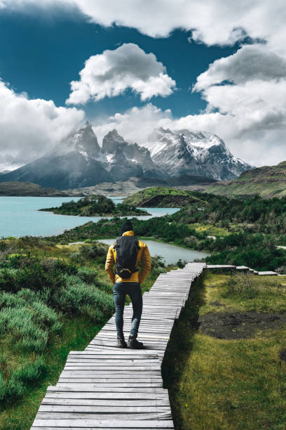 man hiking at torres del paine - chile - south america travel stock photos and pictures