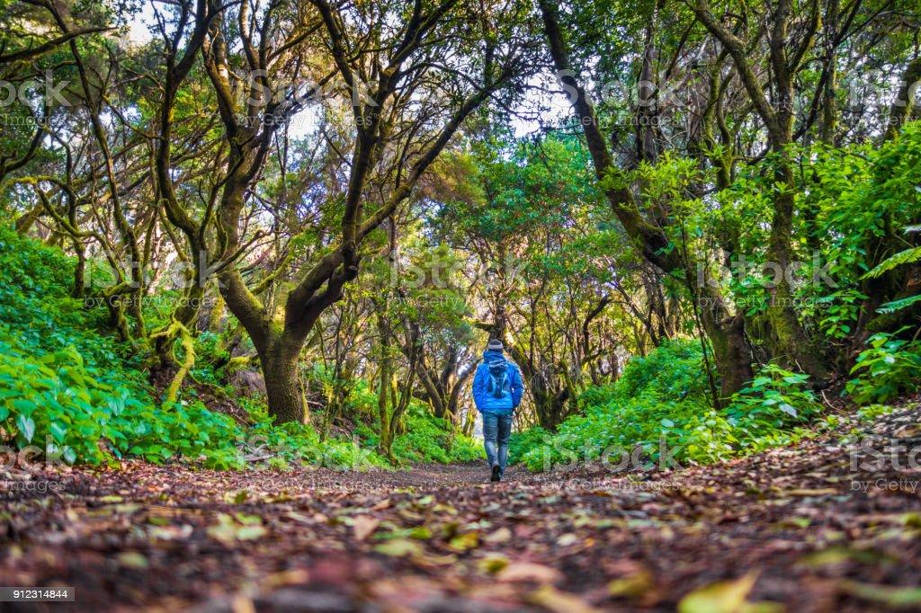 Fotografía de Hombre Caminando Por El Bosque Místico El Hierro Islas ...