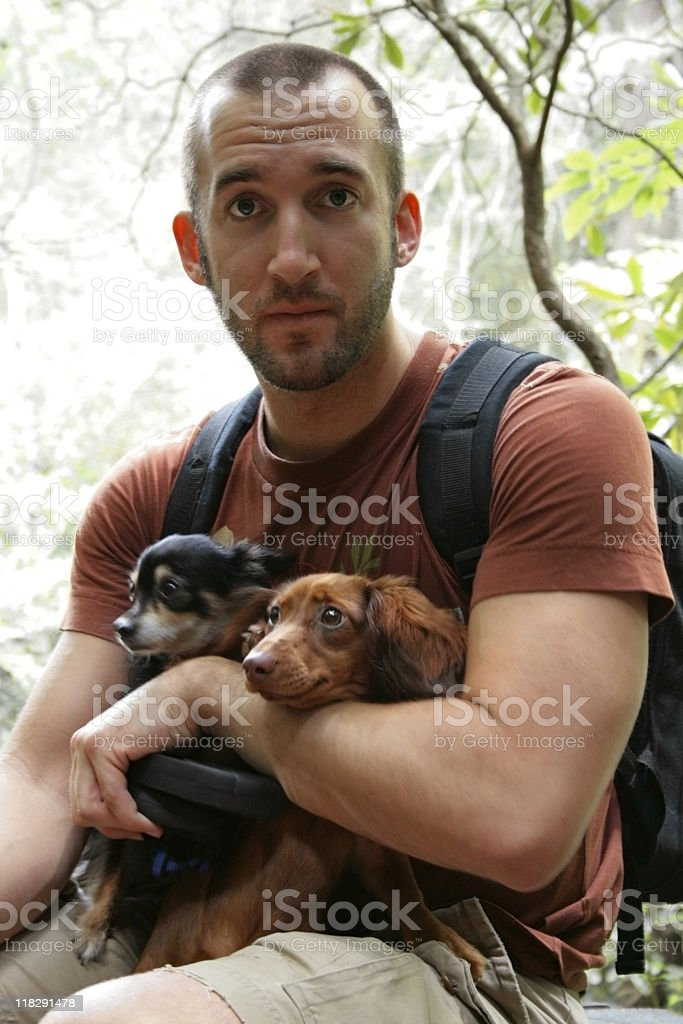 Man hiking with dogs stock photo