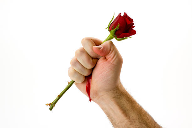 Man holding a red rose and bleeding from the pricks picture id152541814?b=1&k=6&m=152541814&s=612x612&w=0&h=az8loasvgvlfh1doknkfa9grhzkhnjfeh4ph8fb7chg=