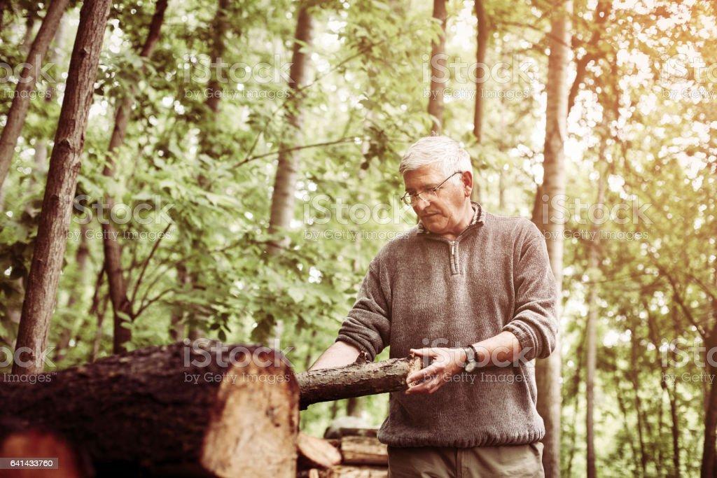 Man holding a tree trunk. stock photo