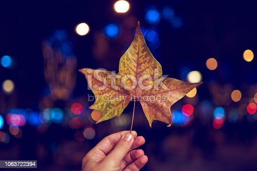 unrecognizable man in the city holding autumn leaf in the sunset.