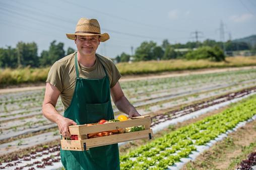 Man holding box of vegetables