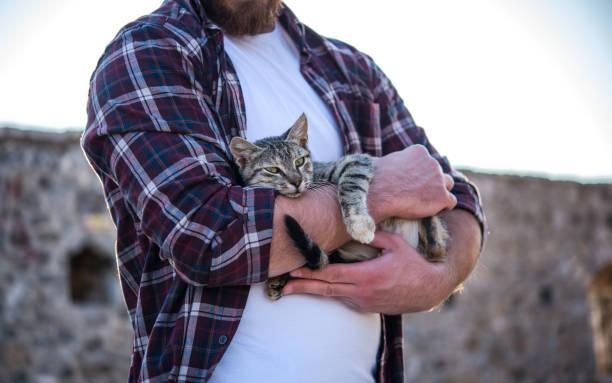 Man holding cute cat picture id880636060?b=1&k=6&m=880636060&s=612x612&w=0&h=vuuiroyihqyrlc5hetvfbfma9n0r0nvkeu lysoezly=