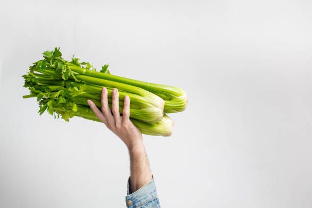 Man holding green fresh celery Man holding green fresh celery. Healthy eating, vegetarian food, dieting and people concept celery stock pictures, royalty-free photos & images