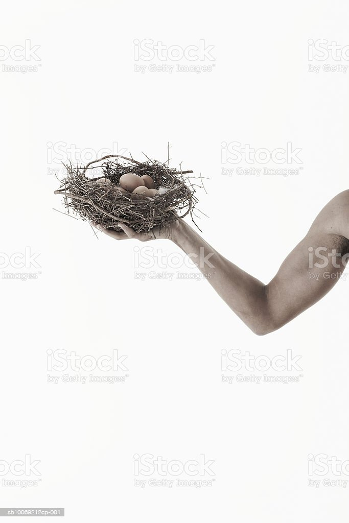 Man holding nest with eggs in hand, view of arm, studio shot royalty-free stock photo