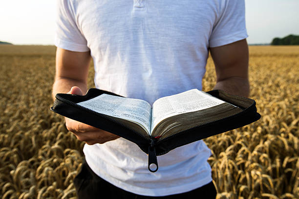 man holding open bible in a wheat field - preacher stock photos and pictures