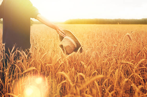 Junger Mann in einem Feld – Foto