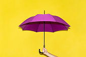 A man holds in his hand a purple umbrella on a background of yellow-lime wall. The concept of autumn, business, protection.