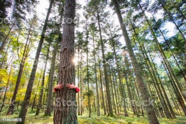 Man hugging a tree picture id1138249879?b=1&k=6&m=1138249879&s=612x612&h=hjpkqvk29486xuclulfw7zwii5zvlkke1zr1ncmj9mi=